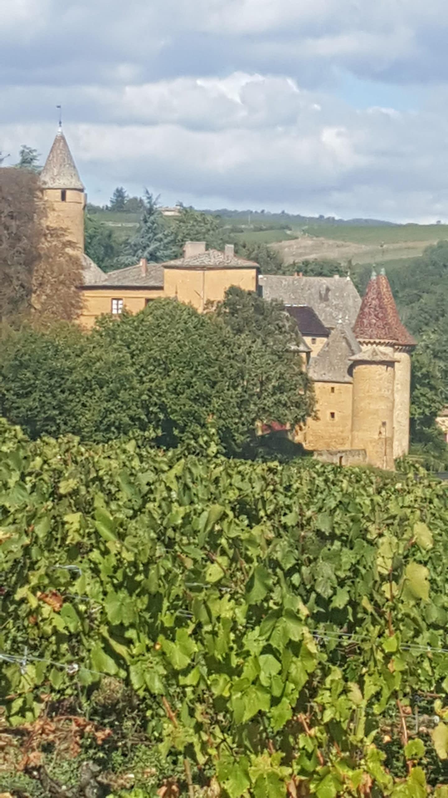 Domaine du Château de Jarnioux