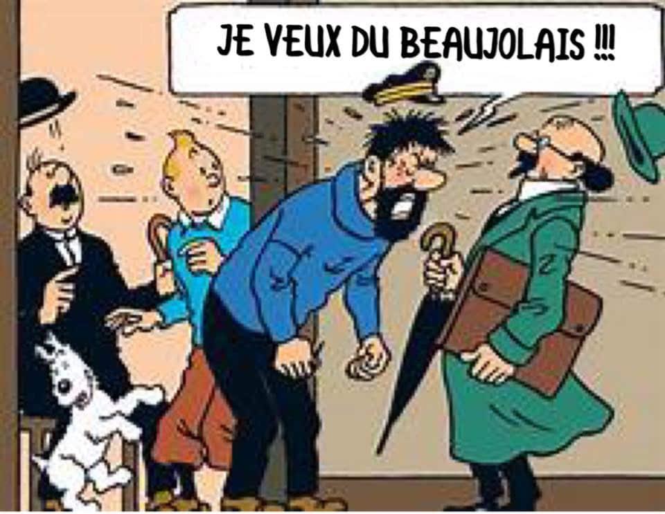 Dégustation du beaujolais nouveau à la cave Saint Poloise