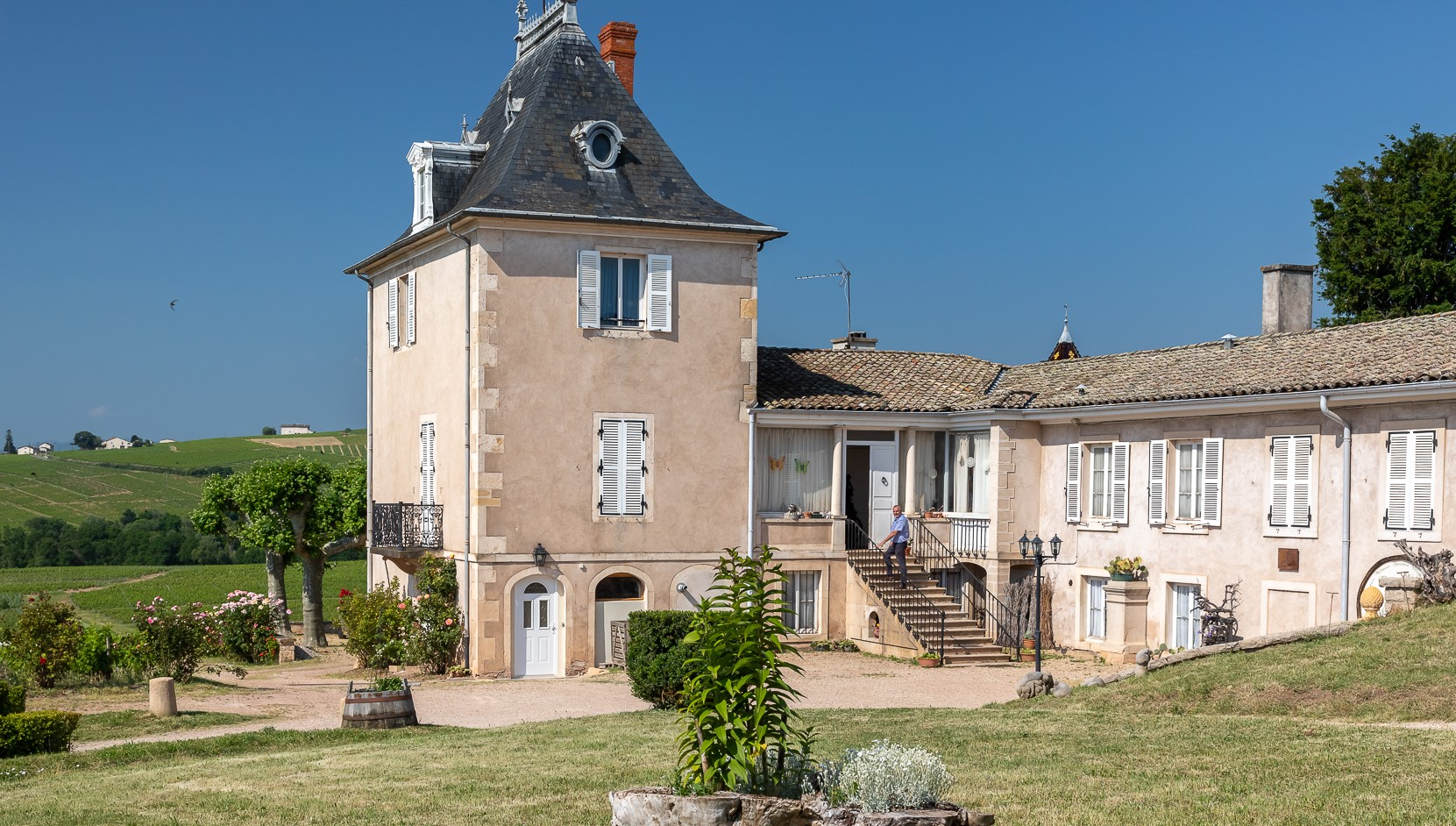 Image-Dîner vigneron au château et Visite du Moulin à vent
